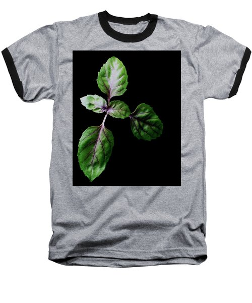 A Sprig Of Basil Baseball T-Shirt