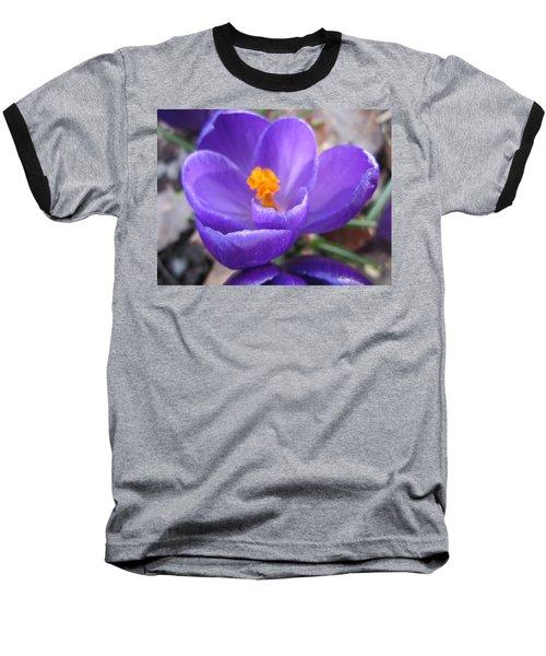 Springjoy Baseball T-Shirt