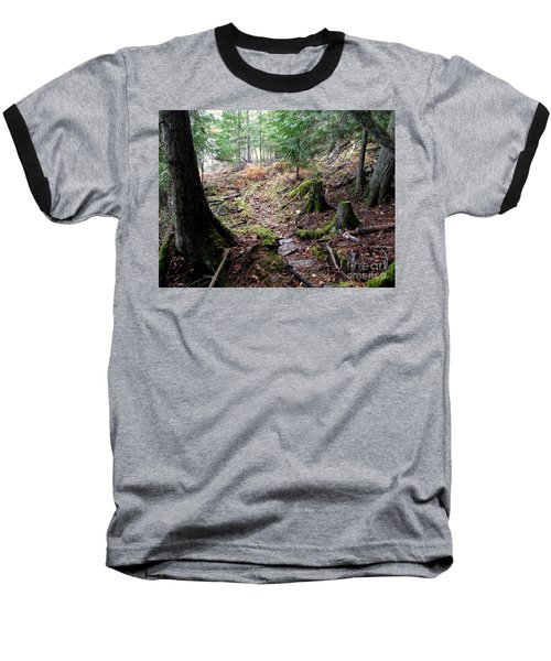 A Walk In The Forest Baseball T-Shirt by Leone Lund