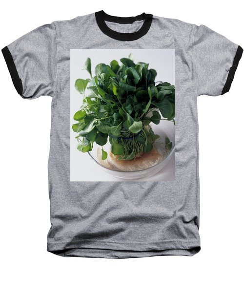 A Watercress Plant In A Bowl Of Water Baseball T-Shirt