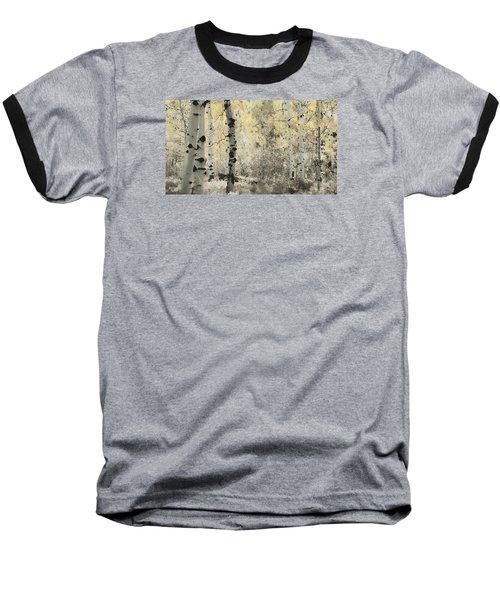 A Wisp Of Gold Baseball T-Shirt by Don Schwartz