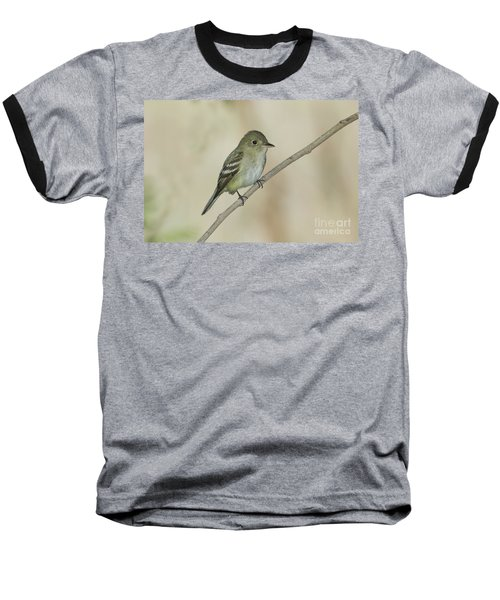 Acadian Flycatcher Baseball T-Shirt by Anthony Mercieca
