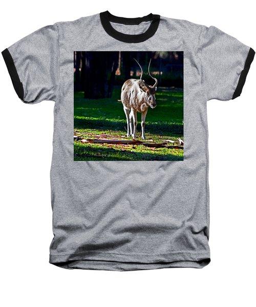 Addax Baseball T-Shirt