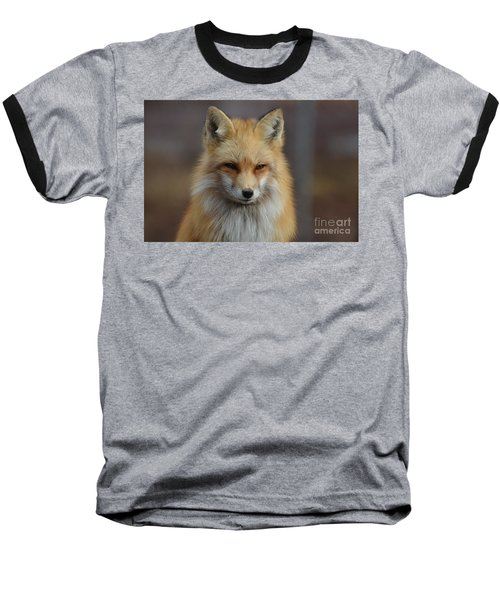 Adorable Red Fox Baseball T-Shirt