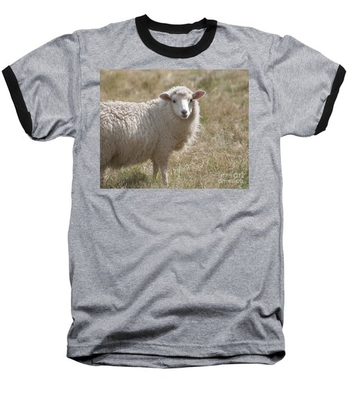 Adorable Sheep Baseball T-Shirt