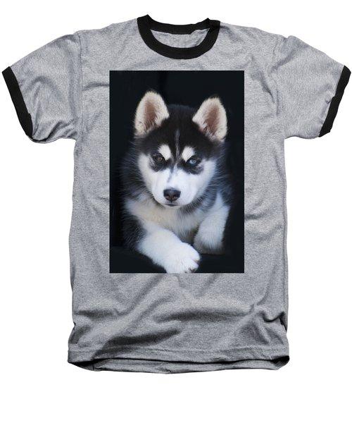 Adorable Siberian Husky Sled Dog Puppy Baseball T-Shirt