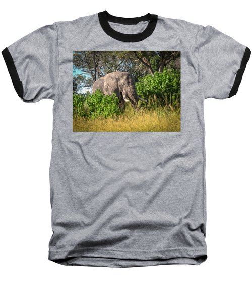 African Bush Elephant Baseball T-Shirt