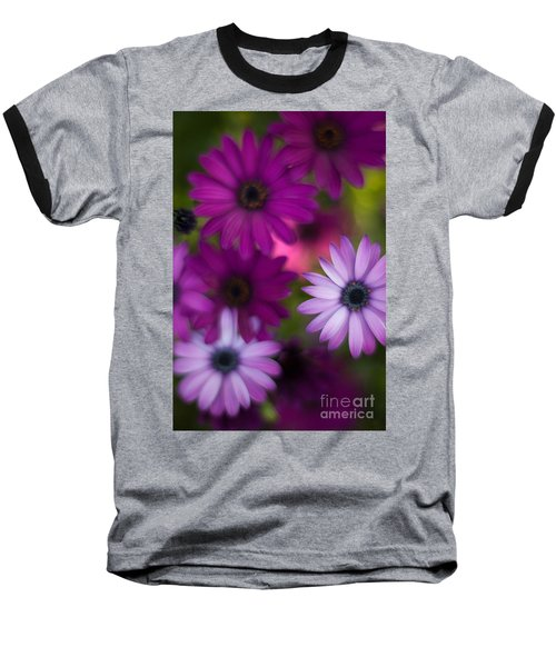 African Daisy Collage Baseball T-Shirt by Mike Reid