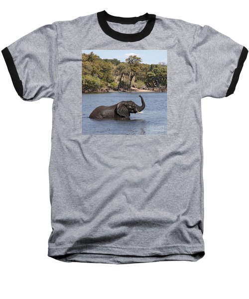 Baseball T-Shirt featuring the photograph African Elephant In Chobe River  by Liz Leyden