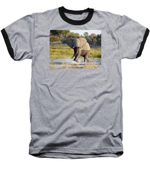Baseball T-Shirt featuring the photograph African Elephant Mock-charging by Liz Leyden