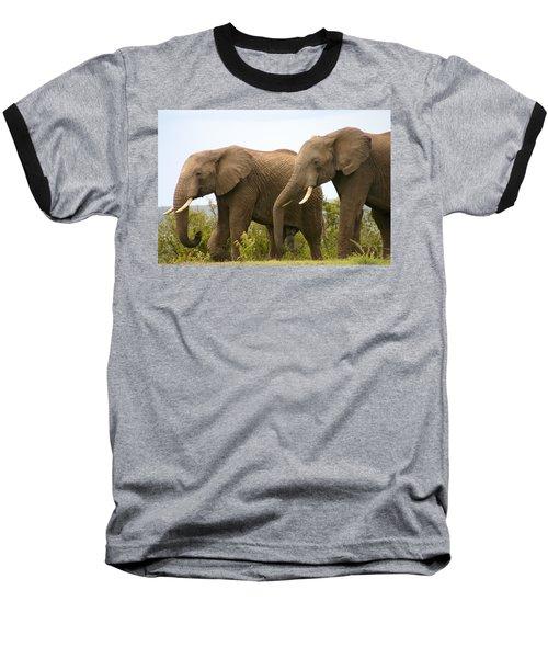 African Elephants Baseball T-Shirt by Menachem Ganon