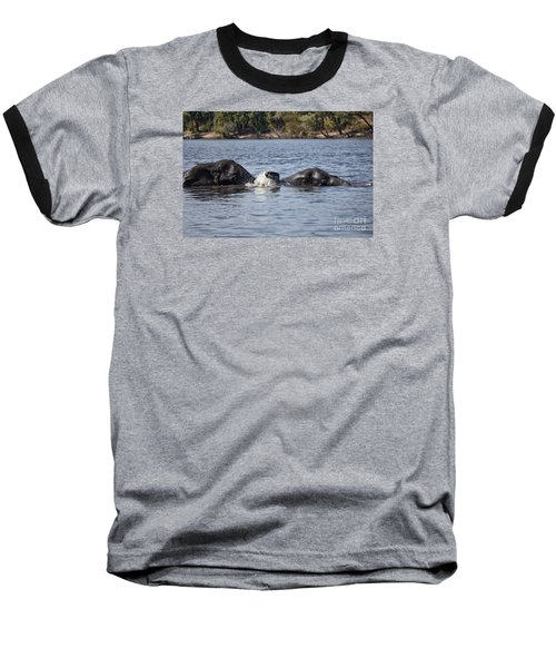 Baseball T-Shirt featuring the photograph African Elephants Swimming In The Chobe River Botswana by Liz Leyden