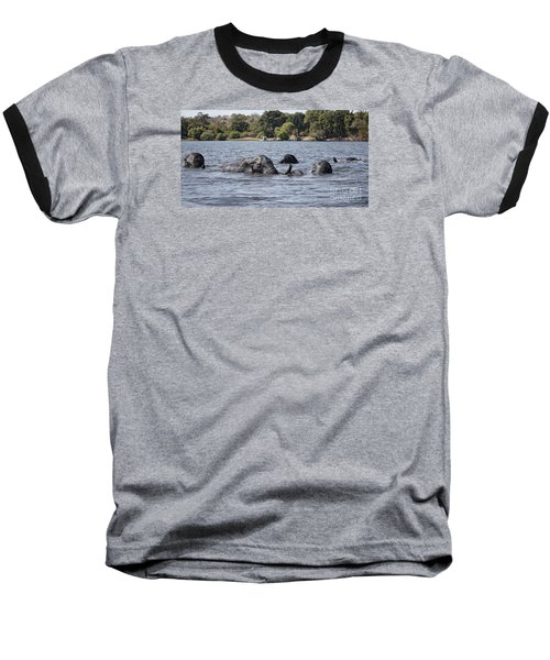Baseball T-Shirt featuring the photograph African Elephants Swimming In The Chobe River by Liz Leyden