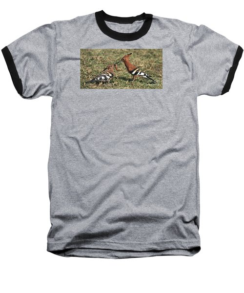 Baseball T-Shirt featuring the photograph African Hoopoe Feeding Young by Liz Leyden