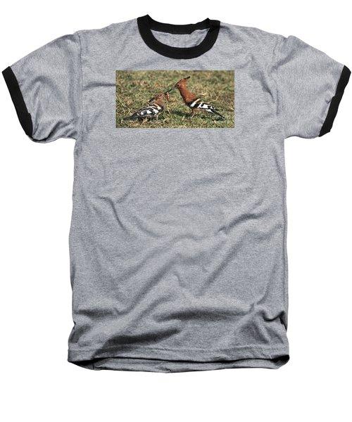 African Hoopoe Feeding Young Baseball T-Shirt