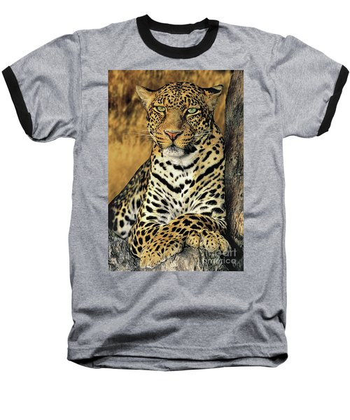 African Leopard Portrait Wildlife Rescue Baseball T-Shirt by Dave Welling