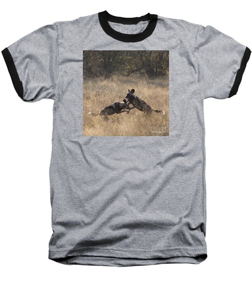 Baseball T-Shirt featuring the photograph African Wild Dogs Play-fighting by Liz Leyden