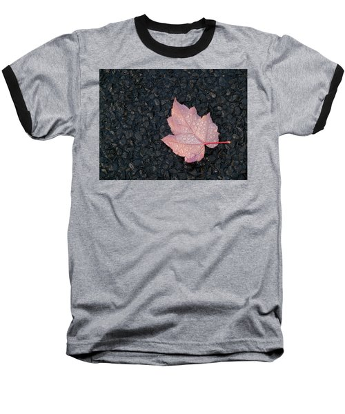After The Rain Baseball T-Shirt by Evelyn Tambour