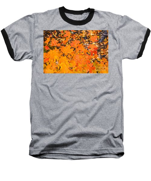 Baseball T-Shirt featuring the photograph After The Rain by Sue Smith