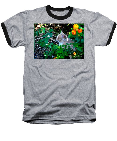 Baseball T-Shirt featuring the photograph Afternoon Nap Interrupted by Susan Wiedmann