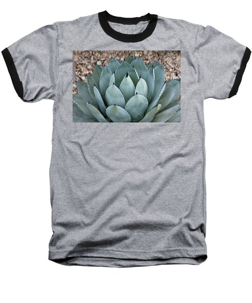 Baseball T-Shirt featuring the photograph Agave by Lana Enderle
