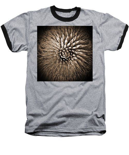 Agave Spikes Sepia Baseball T-Shirt by Alan Socolik