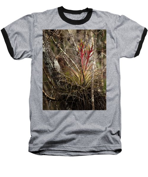 Air Plant Baseball T-Shirt