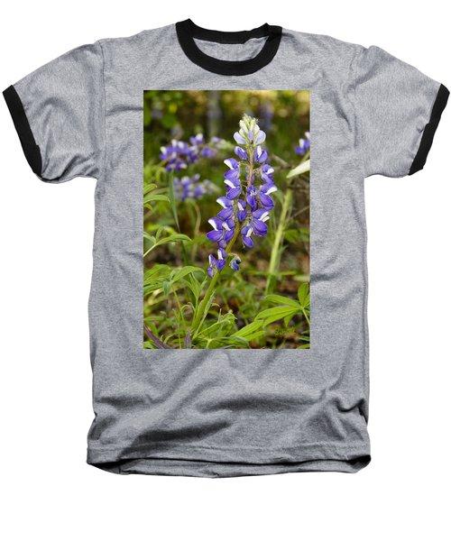 Alaskan Lupine In Denali Park Baseball T-Shirt