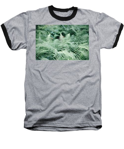Baseball T-Shirt featuring the photograph Algonquin Ferns by David Porteus