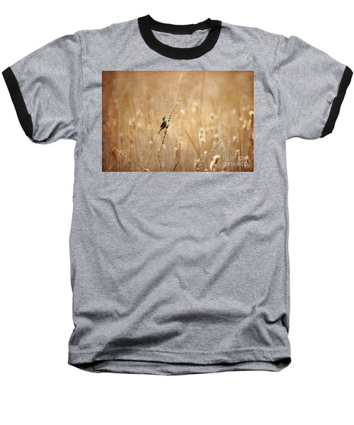 All Rejoicing Baseball T-Shirt