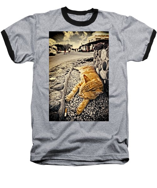 Baseball T-Shirt featuring the photograph Alley Cat Siesta In Grunge by Meirion Matthias
