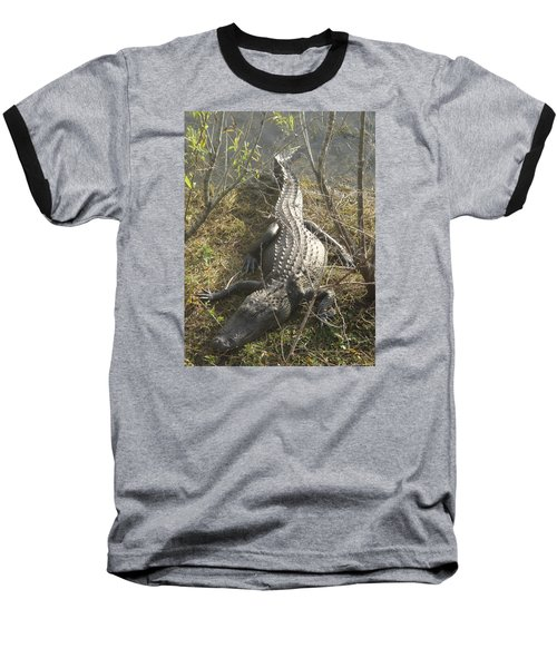 Baseball T-Shirt featuring the photograph Alligator by Robert Nickologianis