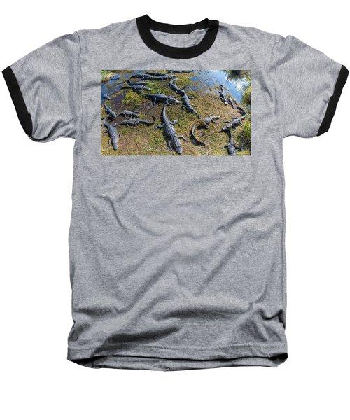 Alligators Along The Anhinga Trail Baseball T-Shirt