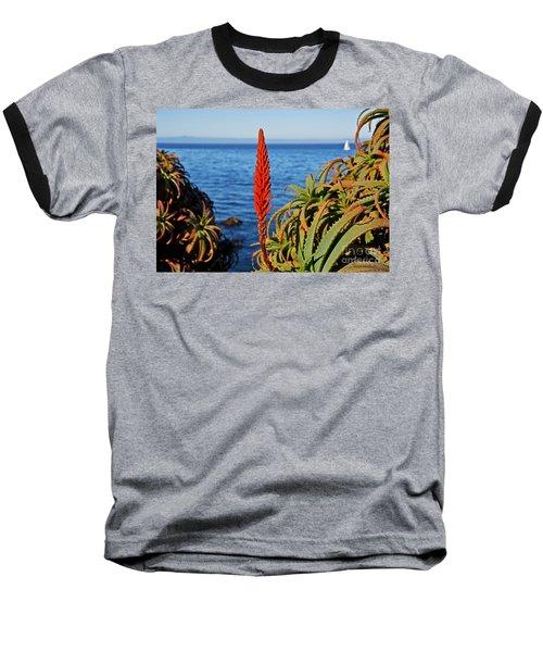 Aloe Arborescens Flowering At Pacific Grove Baseball T-Shirt by Susan Wiedmann