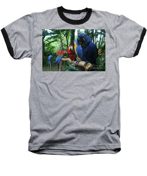 Aloha Kaua Aloha Mai No Aloha Aku Beautiful Macaw Baseball T-Shirt