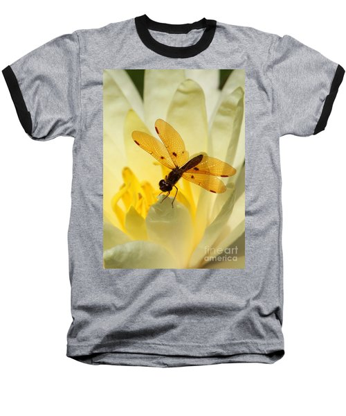 Amber Dragonfly Dancer Baseball T-Shirt