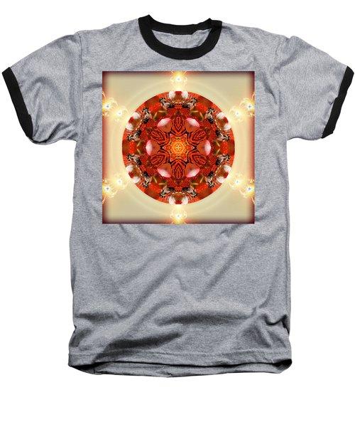 Ambrosia Baseball T-Shirt
