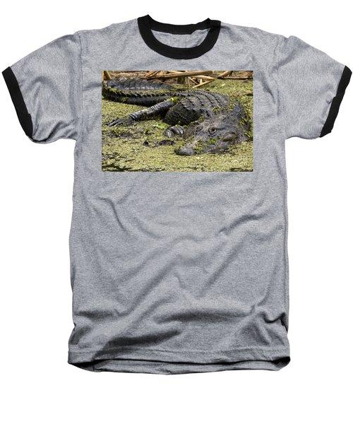 American Alligator Smile Baseball T-Shirt