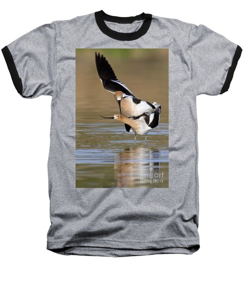 American Avocets Baseball T-Shirt