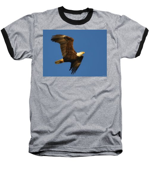 Baseball T-Shirt featuring the photograph American Bald Eagle Close-ups Over Santa Rosa Sound With Blue Skies by Jeff at JSJ Photography