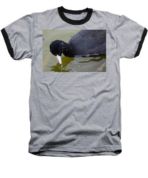 American Coot Baseball T-Shirt by Debra Martz