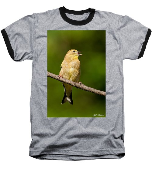 American Goldfinch Singing Baseball T-Shirt by Jeff Goulden