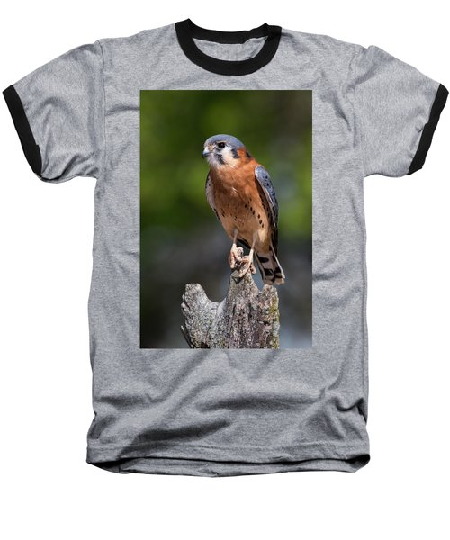 Baseball T-Shirt featuring the photograph American Kestrel by Dale Kincaid