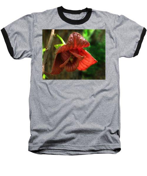 American Pawpaw Baseball T-Shirt