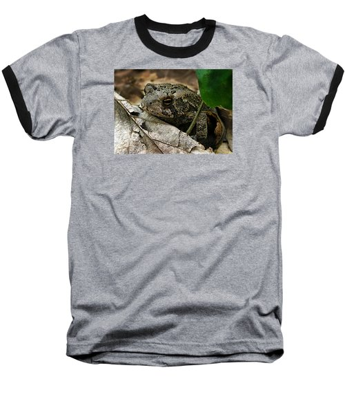 American Toad Baseball T-Shirt by William Tanneberger
