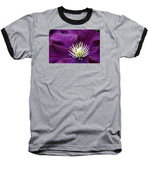 Amethyst Colored Clematis Baseball T-Shirt