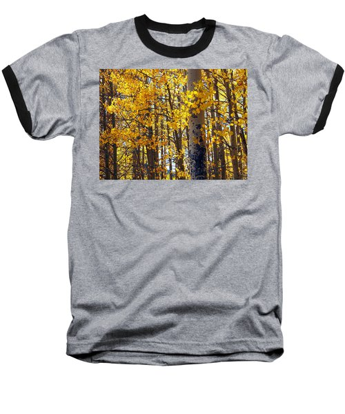 Among The Aspen Trees In Fall Baseball T-Shirt