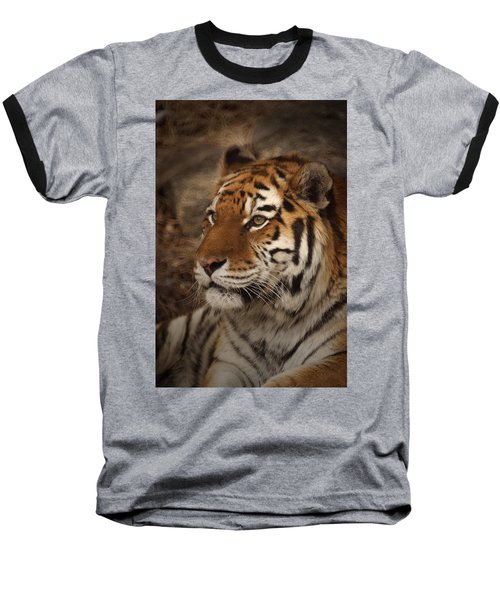 Amur Tiger 2 Baseball T-Shirt