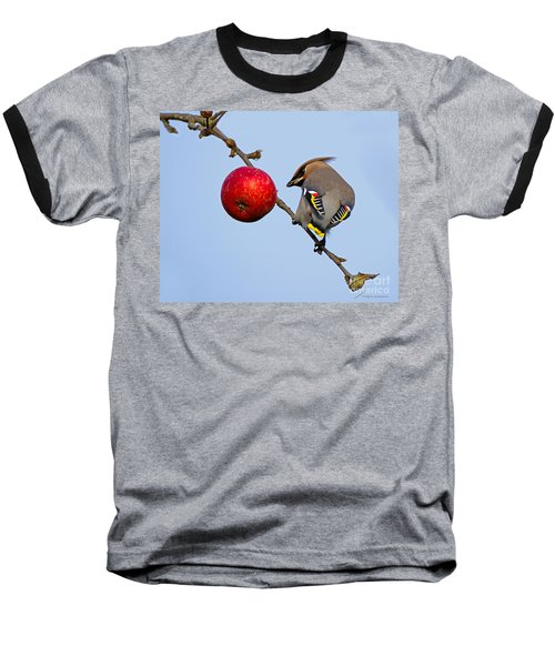 An Apple A Day... Baseball T-Shirt by Torbjorn Swenelius