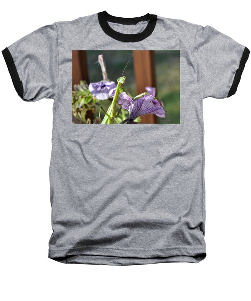 Baseball T-Shirt featuring the photograph An Autumn Surprise by Verana Stark